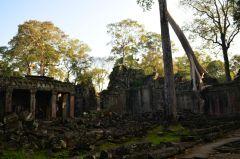 Camboja-555