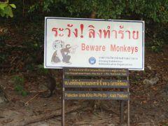 Tailandia (Phi Phi)-130_Monkey Beach