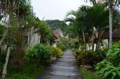Tailandia (Phi Phi)-524