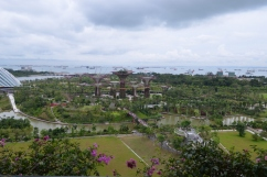 CingapuraA-373